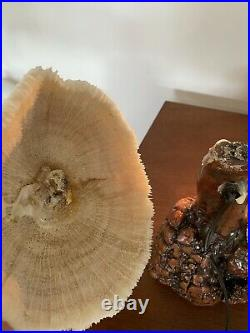 Vintage Genuine Coral Mushroom Table Lamp Rare Mid Century Modern Burl Wood